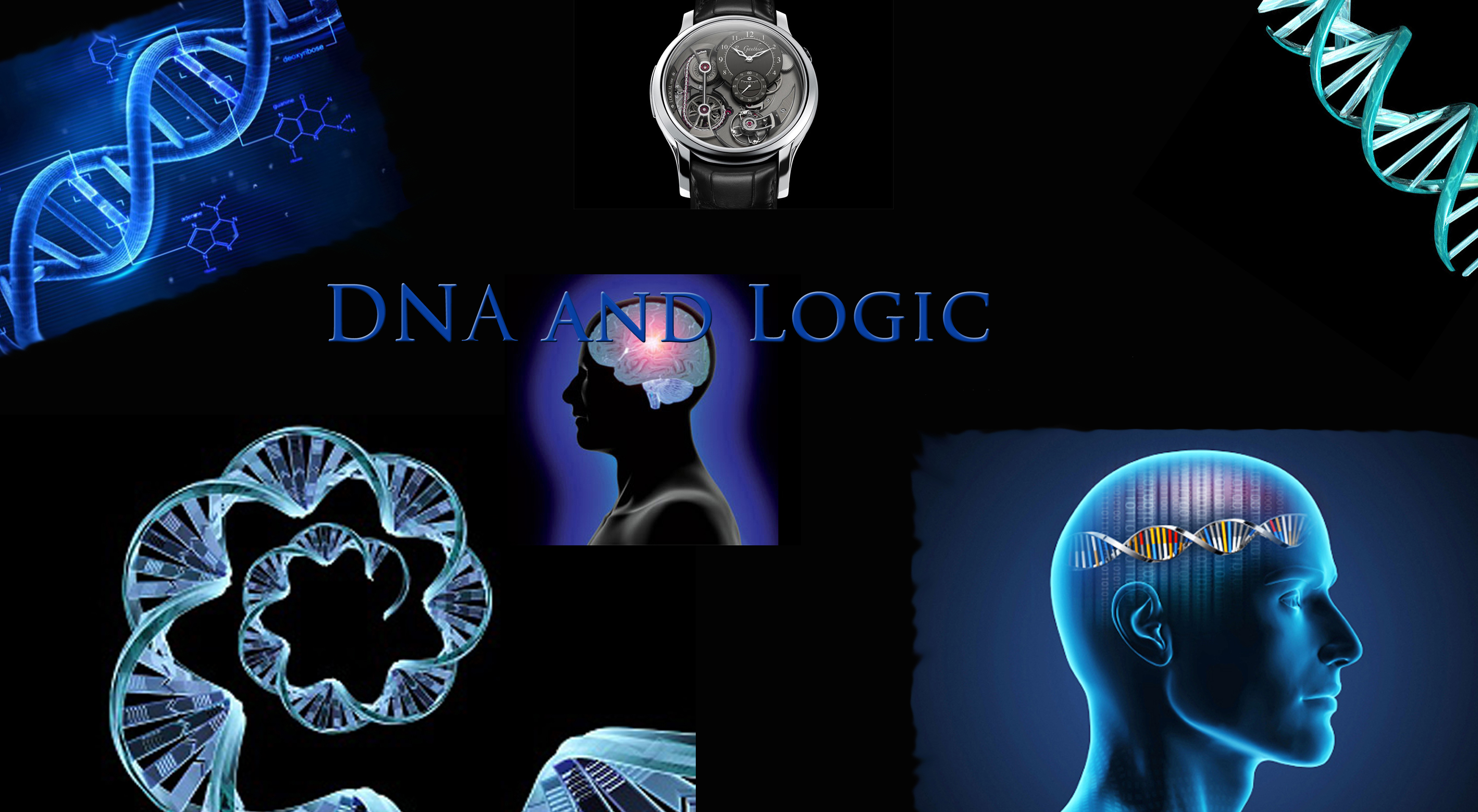 Dna And Logic Creation And Earth History Museum Blogosphere