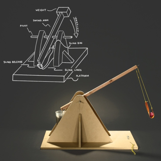 The Trebuchet Plant Creation Minute 3 Creation And Earth History Museum Blogosphere