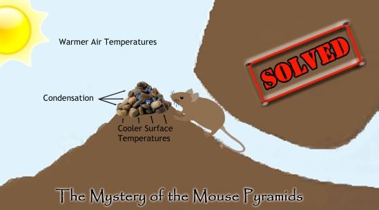 Mouse Pyramids 4